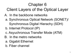 Chapter 6 Client Layers of the Optical Layer
