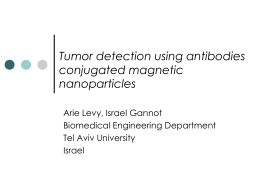 Arik Levy - Tumor Detection Using Antibodies Conjugated Magnetic