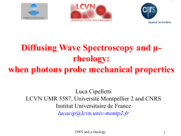 Diffusing Wave Spectroscopy and micro