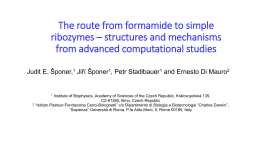 Quantum Chemical Studies on the Formamide