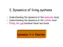 Lecture 12 - Computational & Systems Biology