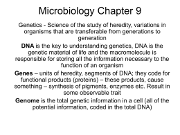 microbiology study guide chpt 1 6 Biology 1 & 1a ~the study of life~ home gchs this site serves as a resource site for students in biology 1 & 1a chapter 1 review guide chapter 1: practice quiz microscopes how to use the microscope label the parts of the microscope.