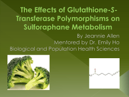 The Effect of GST Polymorphisms on Sulforaphane
