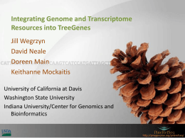 Integrating genome and transcriptome resources into the TreeGenes