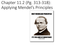 Chapter 11.2 (Pg. 313-318): Applying Mendel*s Principles