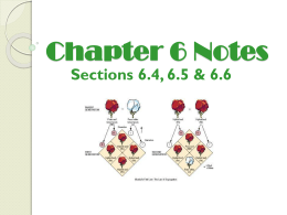 Section 6.4- Traits, Genes, Alleles