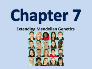 Section 7.1: Chromosomes & Phenotypes