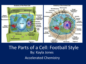 The Parts of a Cell
