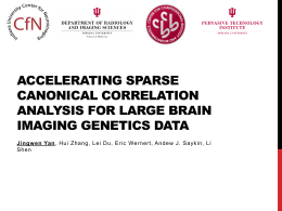Accelerating Sparse Canonical Correlation Analysis for Large Brain