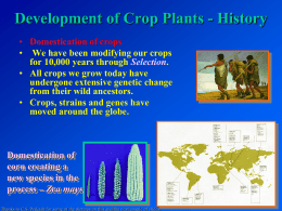 Genetic Improvement of Crop Plants short version with animation links
