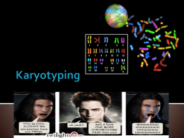 karyotyping ppt - Castle High School
