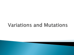 Causes of Variation PPT