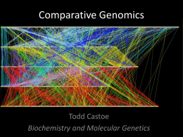 Comparative Genomics(ppt)