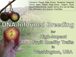 DNA-informed breeding for high-impact fruit quality