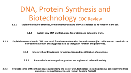 Rna And Protein Synthesis Dna Protein Synthesis Biotech Review Powerpoint
