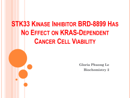 STK33 Kinase Inhibitor BRD-8899 Has No Effect