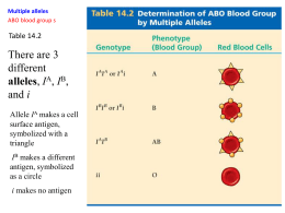 Chapter 6 The ABO Blood Group System Flashcards by ...