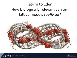 Eden: How biologically relevant can on-lattice models