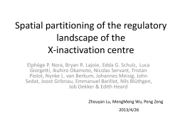 Spatial partitioning of the regulatory landscape of the X