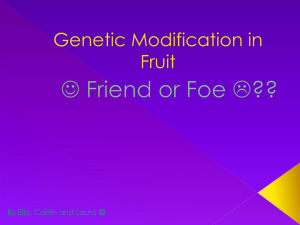 Genetic Modification in Fruit and Vegetables