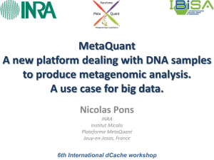 MetaQuant : a new platform dealing with DNA samples