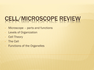 Cell/Microscope Review - Union Beach School District