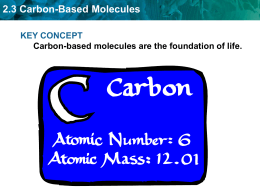 2.3 Carbon-Based Molecules - Fort Thomas Independent Schools