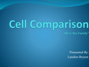 Cell Comparison *All in the Family*