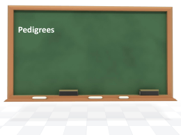 Pedigrees Powerpoint