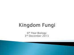Kingdom Fungi - Science M. Cunningham