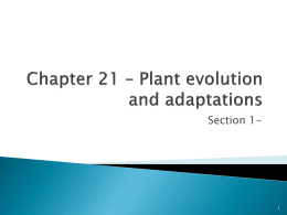 Chapter 21 * Plant evolution and adaptations