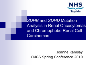 SDHB and SDHD Mutation Analysis in Renal Oncocytomas and
