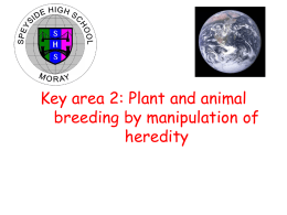 Key area 2: Plant and animal breeding by manipulation of heredity