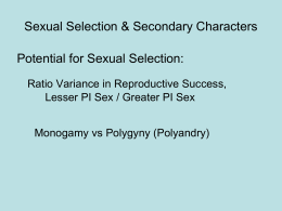 on Sexual Selection