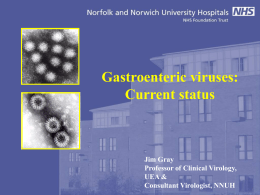 Gastronomic Viruses – current status