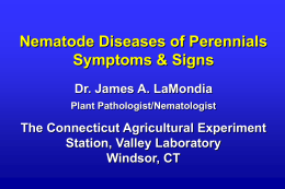Signs and Symptoms of Damage on Perennials Slides