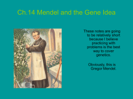 PowerPoint Presentation - Ch.14 Mendel and the Gene Idea