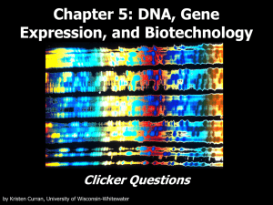 DNA, Gene Expression, and Biotechnology Clicker Questions