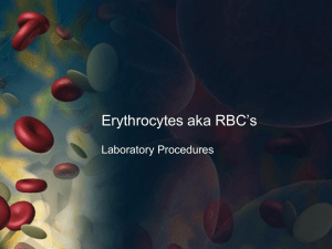 Erythrocytes aka RBC`s - Laboratory Procedures