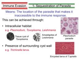 immune response lecture2