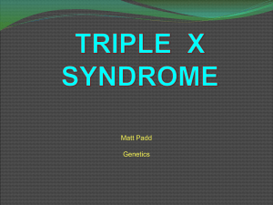 triple X - trefzclasses
