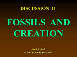 11. fossils and creation - Sciences and Scriptures