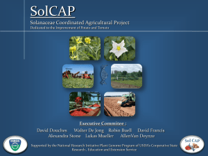 Executive Commitee - SolCAP