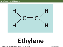 Ethylene Slides