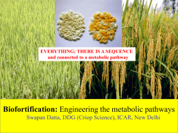 Biofortification by Dr Swapan Kumar Datta, DDG (Crop