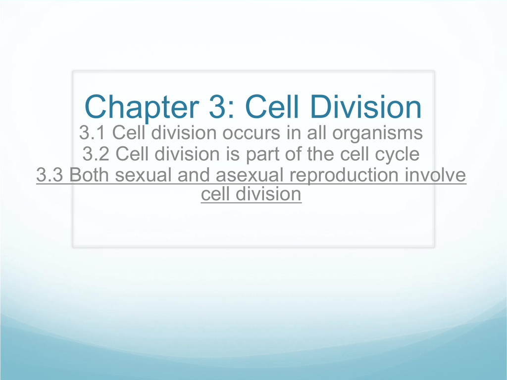 3 3 Both sexual and asexual reproduction involve cell division