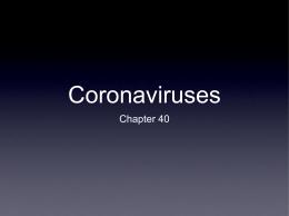 15 Coronaviruses
