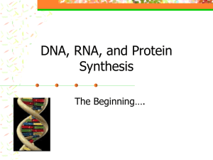 DNA, RNA, and Protein Synthesis ppt