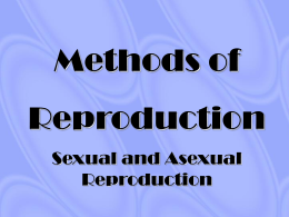 Methods of reproduction