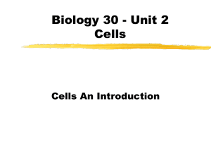 Cell Introduction Powerpoint
